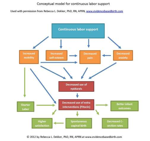 Doula-conceptual-model1