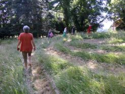 walking the spiral during the summer solstice retreat