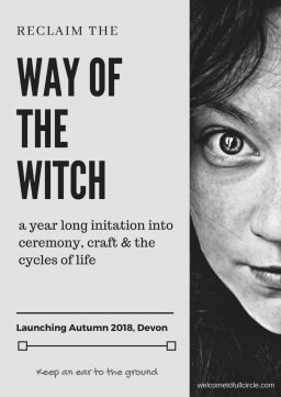 the way of the witch flyer
