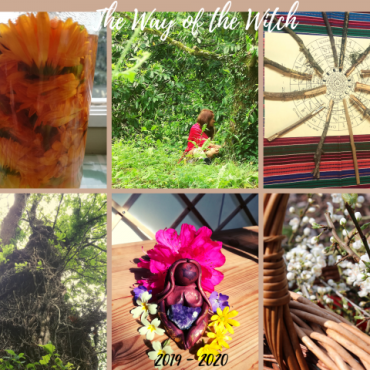way of the witch calendula tree ogham oak flowers goddess hawthorn